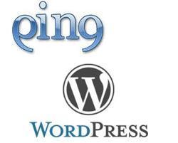 Что такое пинг сервисы. Как настроить пинг сервисы на WordPress