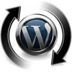 udalyaem-prefix-more-v-wordpress