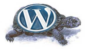 uznaem-chto-tormozit-wordpress