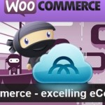 Делаем постраничную навигацию на WooCommerce+WordPress