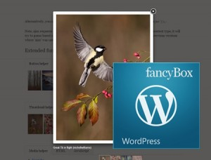 wp-fancybox-lightbox