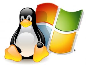 Основные преимущества хостинга Linux и Windows