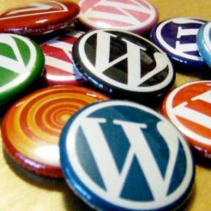 wordpress-css-add-to-post