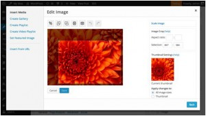Редактор изображений в WordPress 3.9