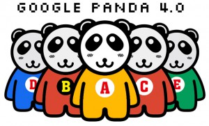Поисковая система Google запускает Панду 4.0