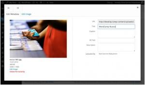 Информация о файле в WordPress 4.0
